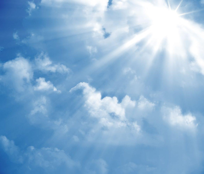 efecte negative ale soarelui