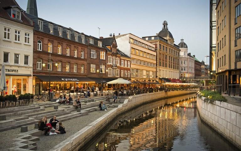 Adjud Danemarca transport persoane