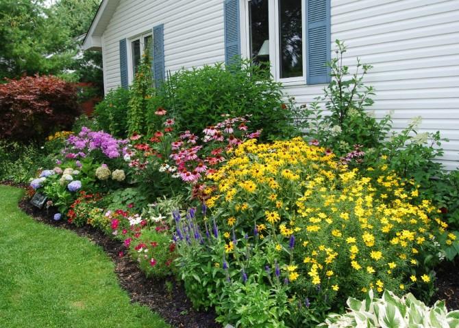 gradina cu flori anuale