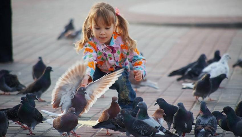 copil cu porumbei