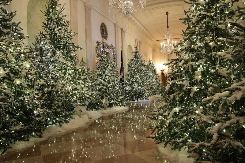 Casa Albă Crăciun 2018