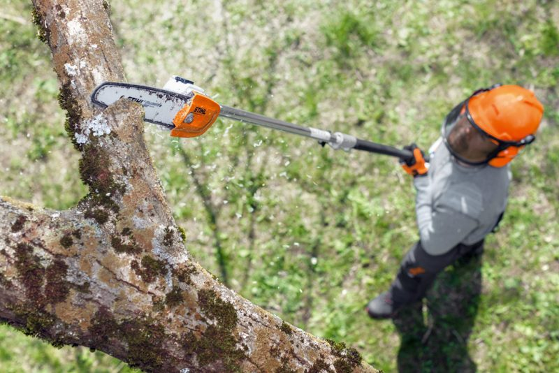 utilaj îngrijirea pomilor