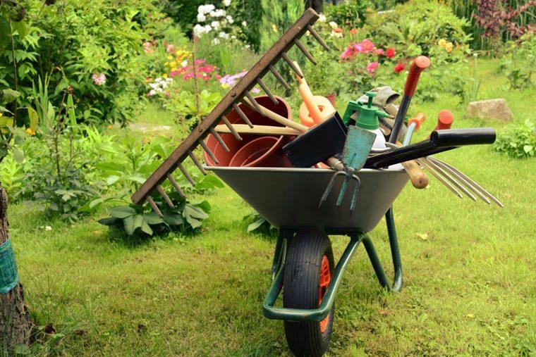 Curățenia generală grădină