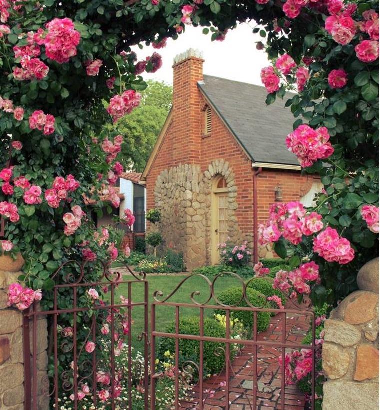 poarta de trandafiri gradina