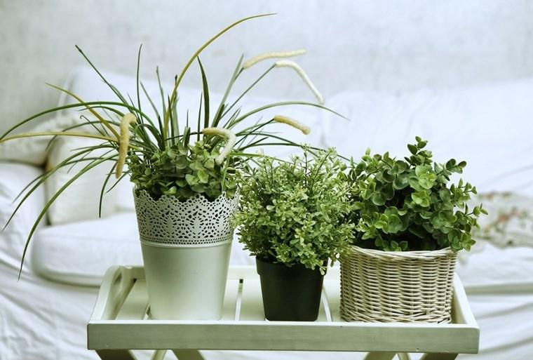 Detoxifierea de primăvară a casei