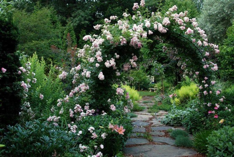 arcada de grădină
