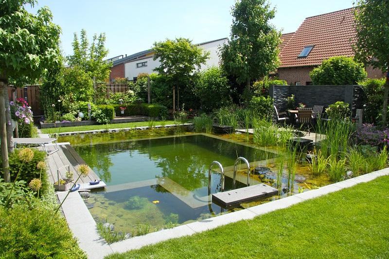 piscina naturală