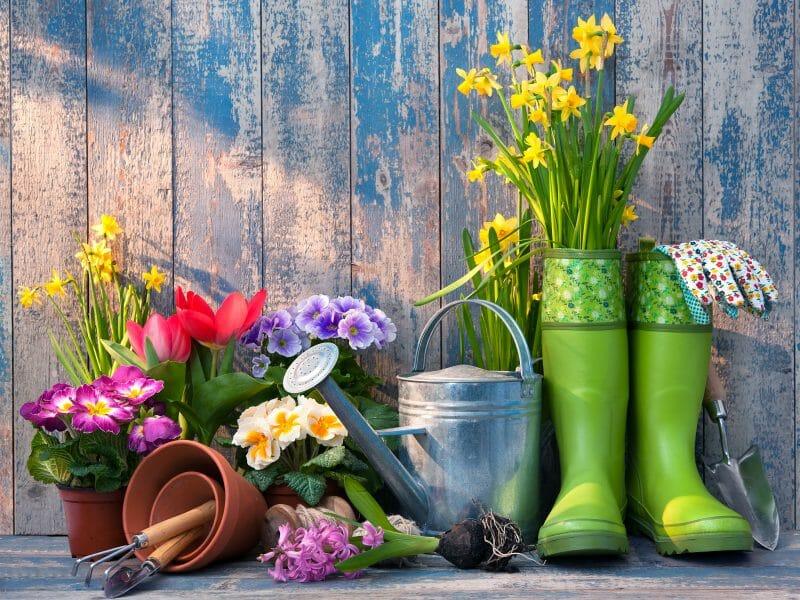 grădinăritul un hobby tot mai popular