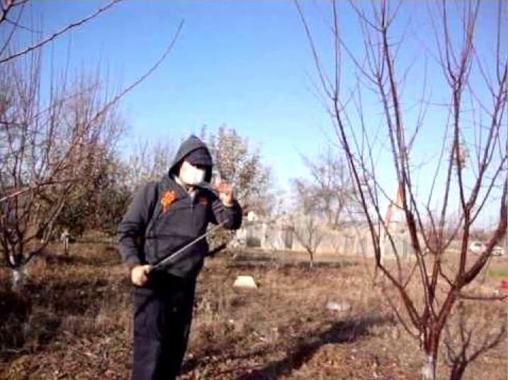 pregătirea grădinii pentru primăvară