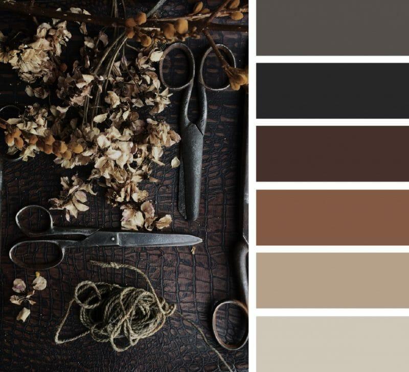 schema de culori maro 2