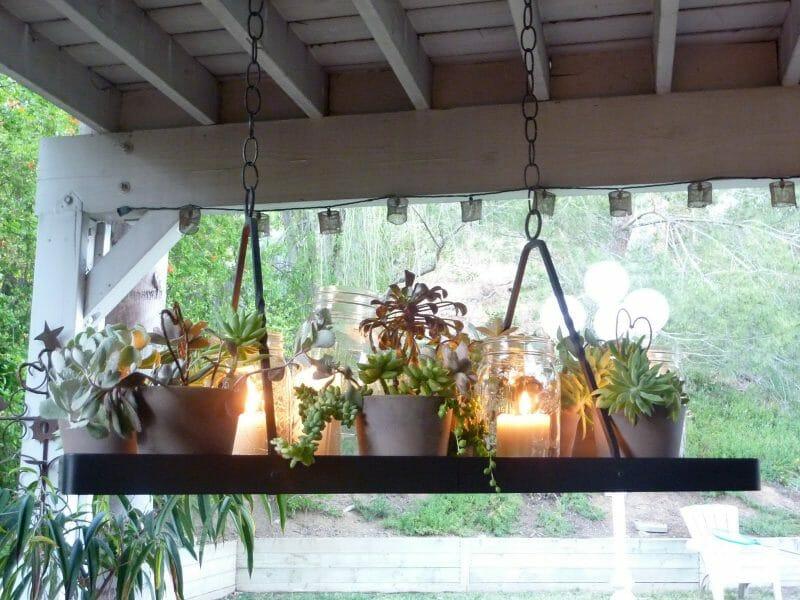 aprilie suculente veranda