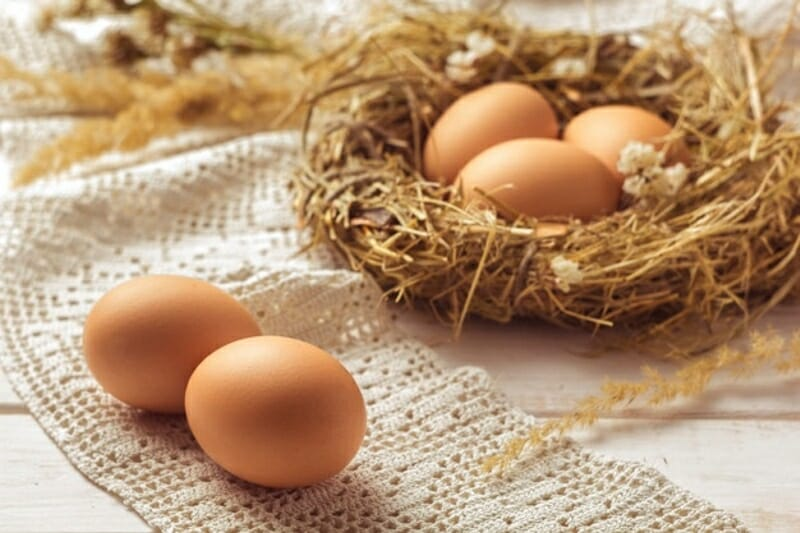 decor cu oua nevopsite