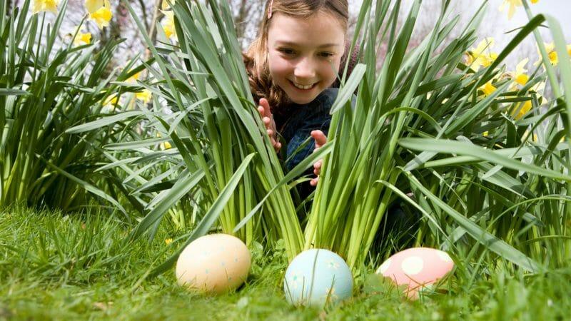 vânătoare de ouă